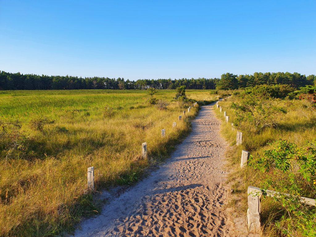 Wanderweg Darßer Ort